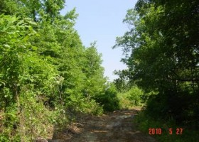 672_tomloeb150acres006