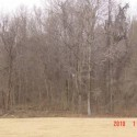 Wooded land. There is approximately 1500 acres in woods. 1,000 acres m/l of which is in one block. Some timber was harvested approximately 19 years ago.
