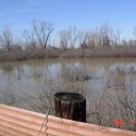 Picture taken from inside the duck blind.