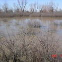 Another picture of the duck hole.This hunting area has a longtime proven history of consistent hunting opportunities.