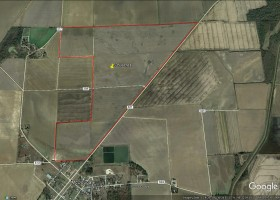 Clay County 335 Acres