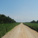 County Road to the farm