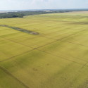 1,241 acres total